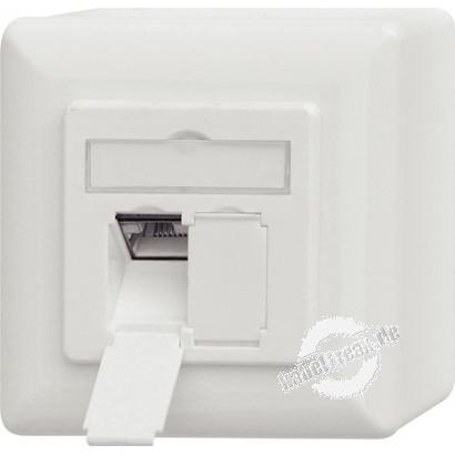 Datendose, Cat.6A EIA/TIA-568B, LSA, 2-fach, Aufputz / Unterputz, reinweiß Zum Anschluss von 2 PCs